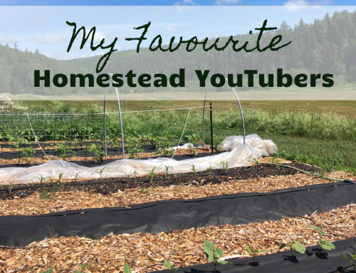 My Favourite Homestead YouTubers